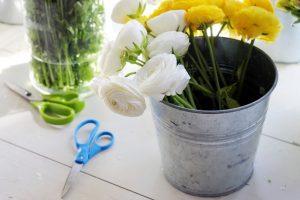 Asortyment kwiaciarni