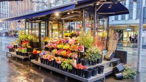Pomysł na biznes – własna kwiaciarnia